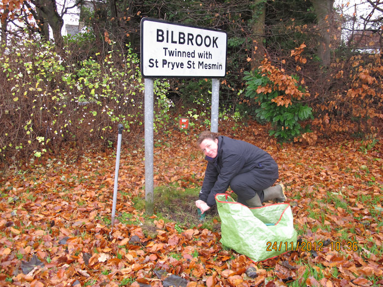 Example image of Bulb Planting